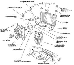 2001 honda accord radiator diagram  2001  free engine