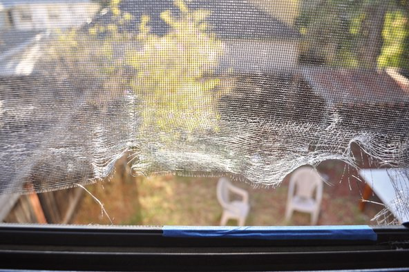 Broken window screen