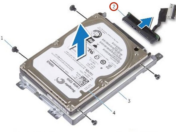 Connect the interposer to the NEW hard drive.