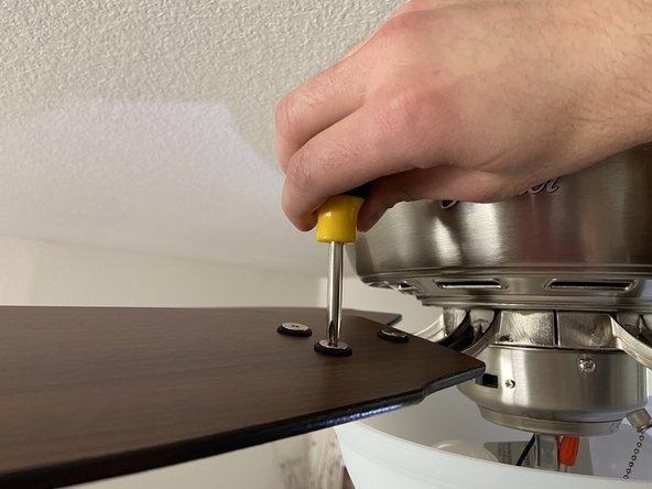 Unscrew and remove the ceiling fan blades.