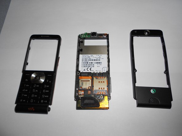 After removing the back plate and the front plate, the phone should look like the remaining pictures.