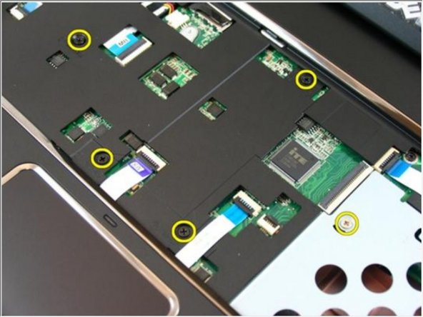 Flip the computer around and remove the screws that secures the palm rest.