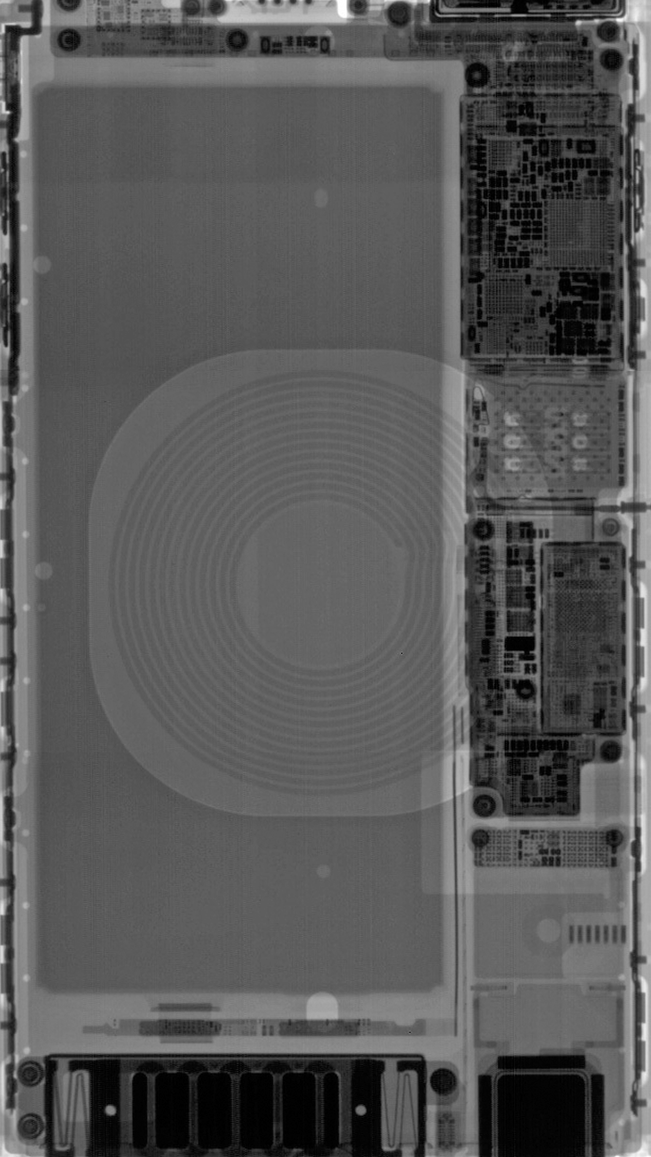 IPhone 8 Plus X Ray Wallpaper