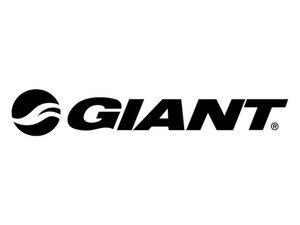 Giant Repair