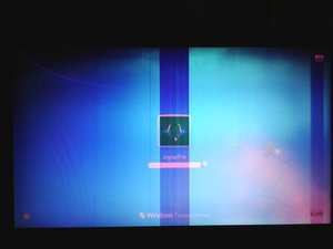 SOLVED: Possible garbage display issue - is it my video card