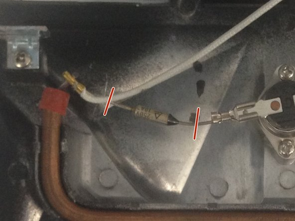 Cut the two wires that connect to the thermal fuse.
