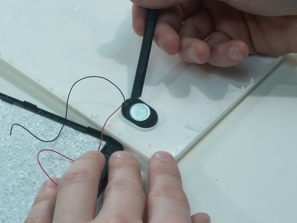 Use the plastic spudger to remove speaker from the back panel.