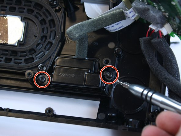 Remove the two T-10 Torx screws