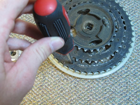 Use a Phillips head screwdriver to remove the four screws on the back of the chain ring.