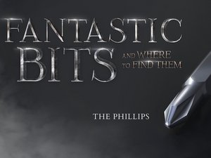 Fantastic Bits and Where to Find Them: The Phillips