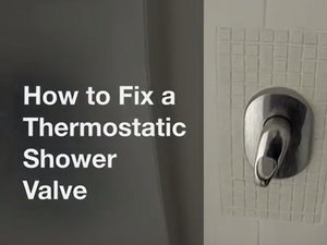 Thermostatic Shower Mixer valve Repair
