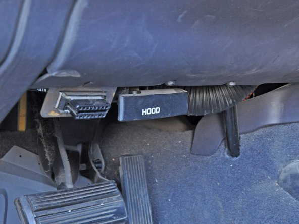 "Locate the hood release lever. It is located under the driver's side dash and is labeled ""HOOD"". Pull this lever until you hear the hood click open."