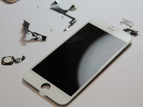 The iPhone 6 display assembly. It's thinner than the iPhone 5s/5c/5 screen.