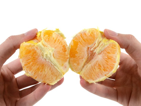 Image 3/3: It appears that if you are not careful enough whilst pulling the Orange apart, you will tear the sectional membranes of the Orange.