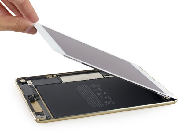 As if the fused display wasn't enough of a hint—this is looking more and more like a miniature iPad Air 2 by the minute.
