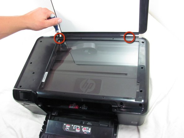 Using a T10 screwdriver, unscrew the two screws that fasten the frame to the printer hood.