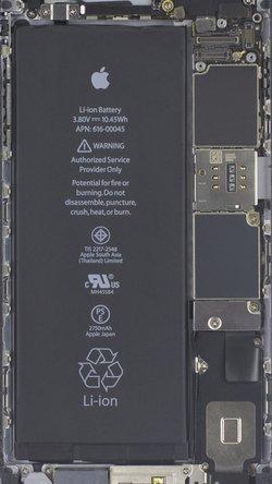 iPhone 6S plus x-ray wallpaper