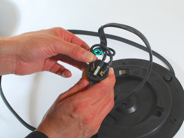 Remove the connectors (spaded lugs) from the kettle's power coupling by gently pulling on each wire.