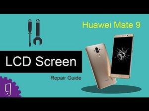 LCD Screen (video)