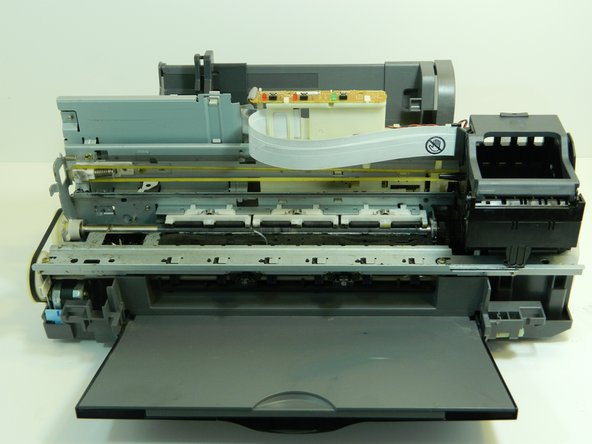 Locate the porous pad inside the metal housing at the front of the printer.