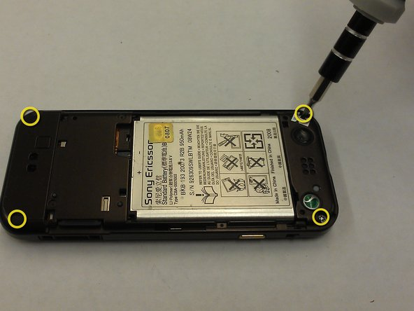 Using a T6 torx wrench, remove the four small screws at the top and bottom corners  on the backside of the phone.