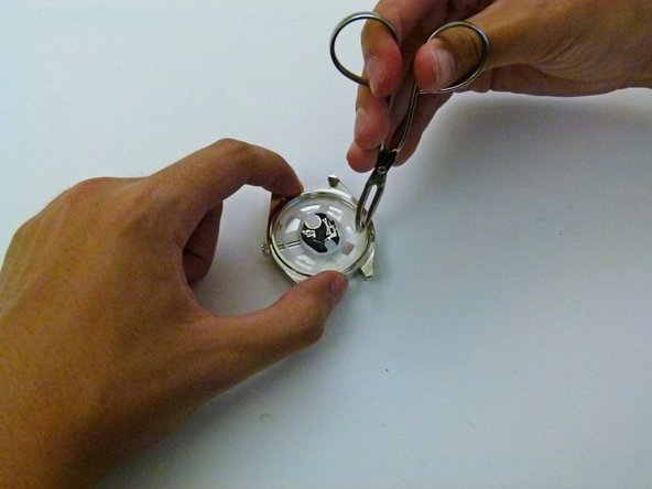 Use your tweezers to grab onto the plastic holder and gently pull it out.