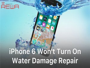 iPhone 6 Won't Turn On - Water Damage Repair
