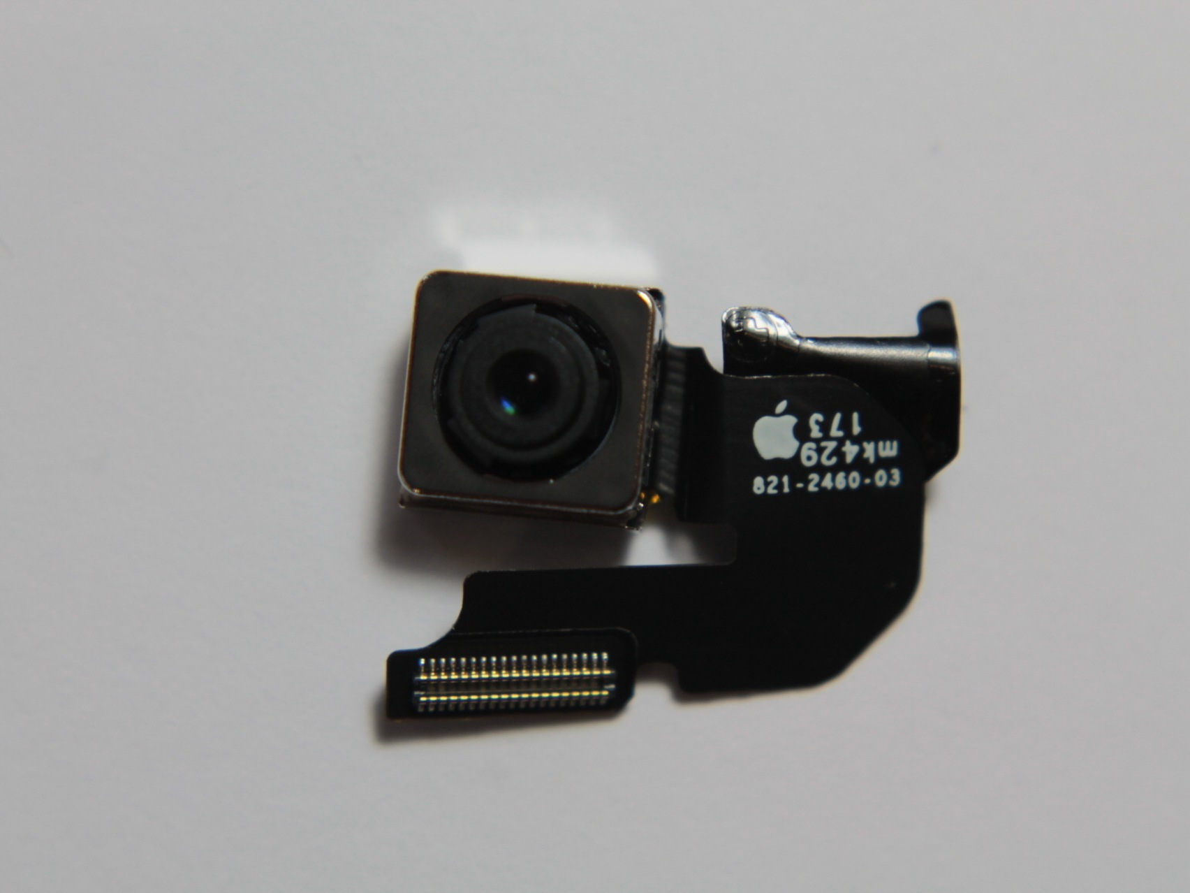 Camera of iPhone 6