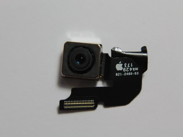 The iPhone 6 rear camera: not as big as its optically stabilized brother.