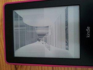 Kindle Paperwhite 5  Generation Display broken - Kindle