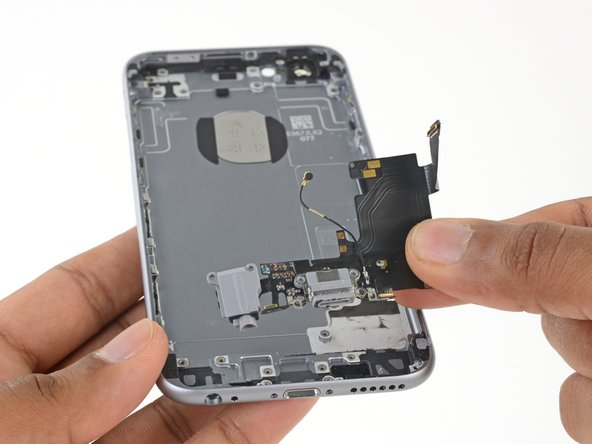 Remove the Lightning connector and headphone jack assembly.