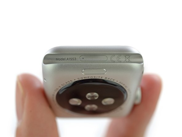 Image 1/1: What is the door for? Where does it lead? We may never know...but it looks like the [http://www.macrumors.com/2015/04/23/apple-watch-diagnostic-port-confirmed/|reported diagnostic port|new_window=true].