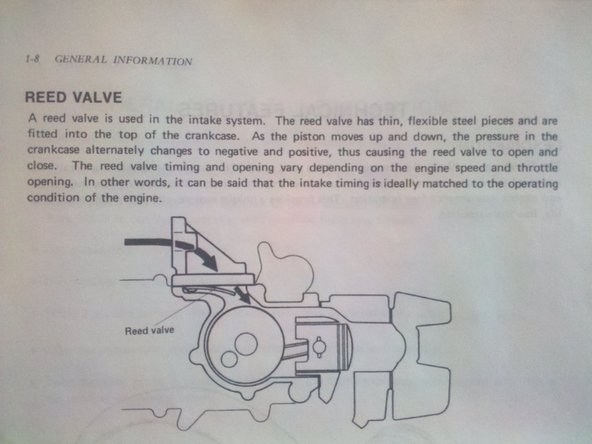 The reed valve is a very important part of the moped, according to the service manual. The metal bars have to be bent a certain way, and other stuff.