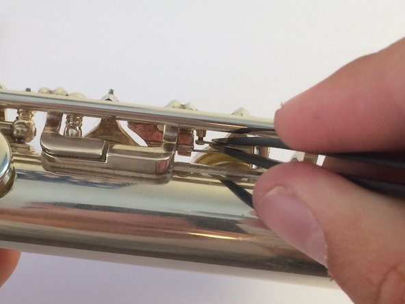 These are the springs behind the F and E finger keys.