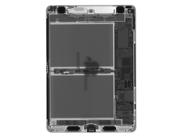 Image 1/3: We immediately note that where the larger iPad Pro's interior volume was [https://d3nevzfk7ii3be.cloudfront.net/igi/B1DvULfUBvWMPsMt|dominated by four huge speaker enclosures|new_window=true], this little guy uses a more conventional setup: the battery hogs most of the space, with the logic board on the side and the speakers squeezed in at the margins.
