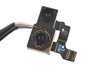 Rear-Facing Cameras