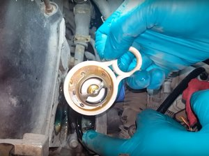 Thermostat and Gasket