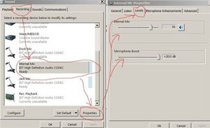 SOLVED: How to turn on the microphone so I can use skype etc