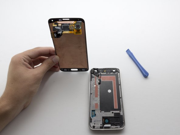 When reassembling the phone you may need to apply glue to the button to keep it in place.