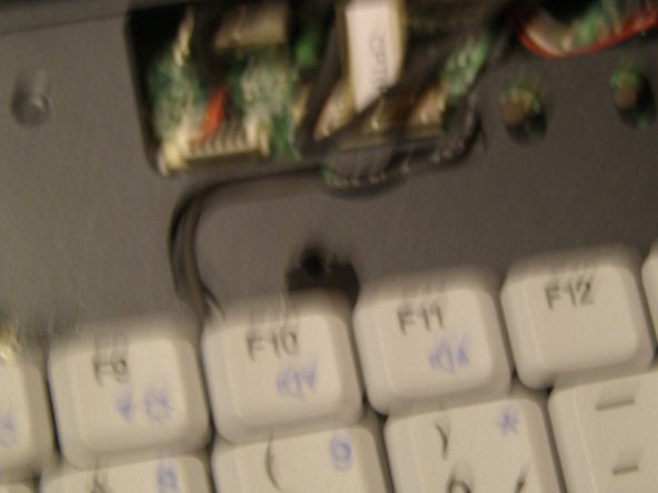 Remove the one screw holding in the keyboard.