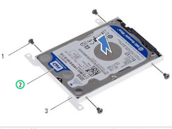 Place the NEW hard drive into the hard-drive bracket.