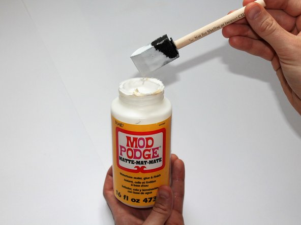 Apply the Mod Podge to the foam brush.
