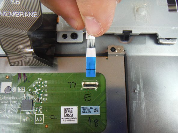 Disconnect the touch pad cable from the touch pad.