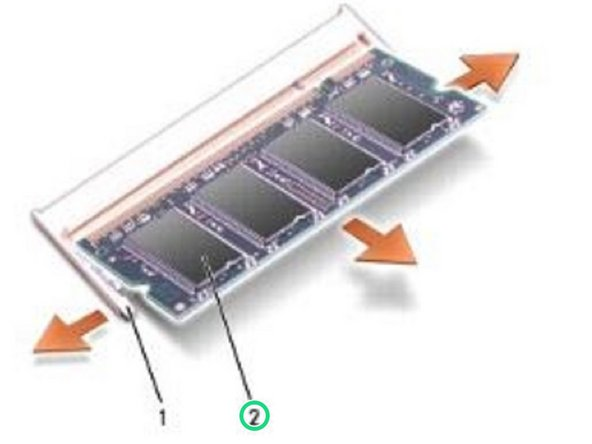Remove the memory module from the connector.