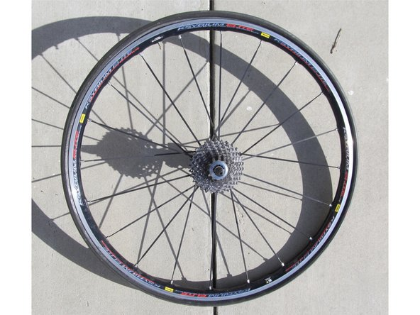 Now that the rear wheel is off the bike, use the tire lever to get under the tire.