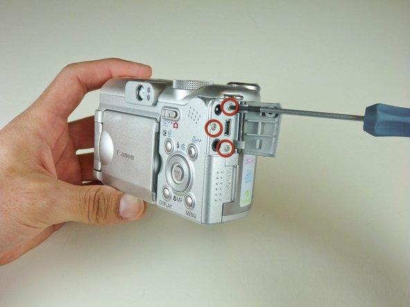 Remove the three screws.  The door can be removed from the camera.