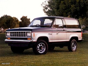 Ford Bronco Repair