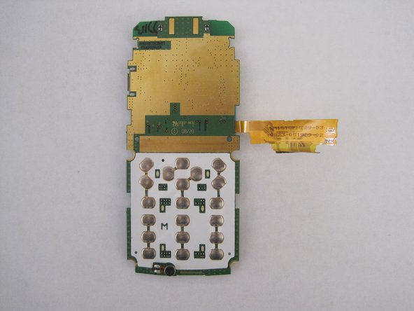 The circuit board is separated from the rest of the phone.