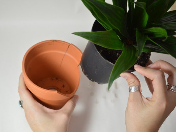 How to Repair a Cracked Flower Pot