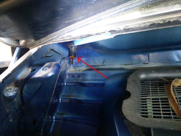 Still on the left side of the car, raise the plastic grid again and you'll see our water drain exit valve.